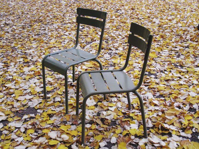 Missing friends in the Jardin du Luxembourg Chairs Jardin Du Luxembourg Paris France Missing Frends