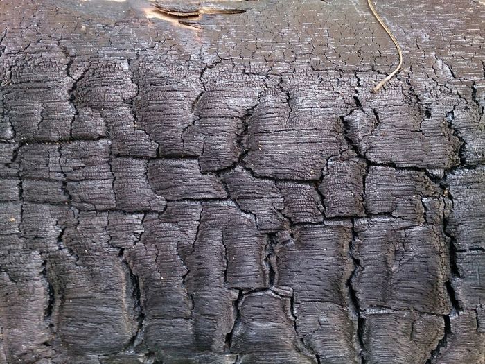 Wood Supernormal Sony Xperia Z Background Wallpaper