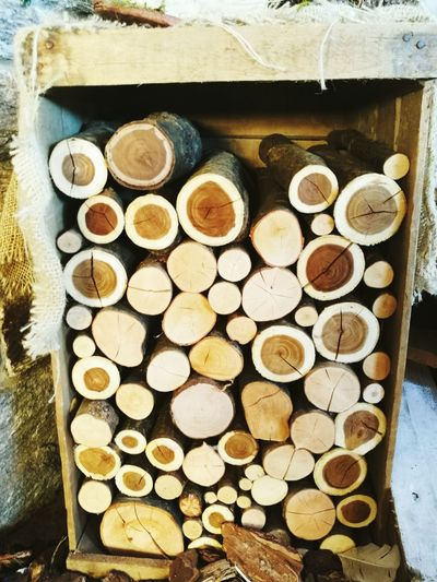 Log Timber Stack Large Group Of Objects Woodpile Deforestation Arrangement Wood - Material No People Lumber Industry Forestry Industry Day Outdoors