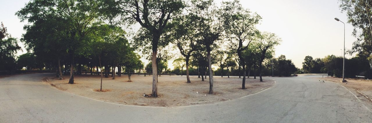 Panoramic Green EyeEm Nature Lover Streetphotography
