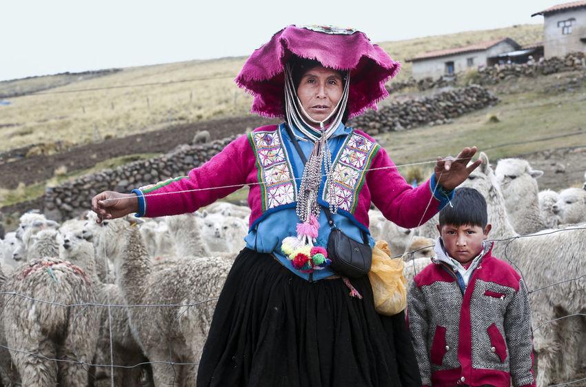 Alpaca Hat Peru Peruvian Clothes Peruvian Culture Alpacas With People Peruvian Peruvian Costume Peruvian Culture Peruvian Hat Peruvian Weaver Peruvian Woman Quechua Quechua Culture Quechua Weaver Quechua Woman South America Weavers Weaving