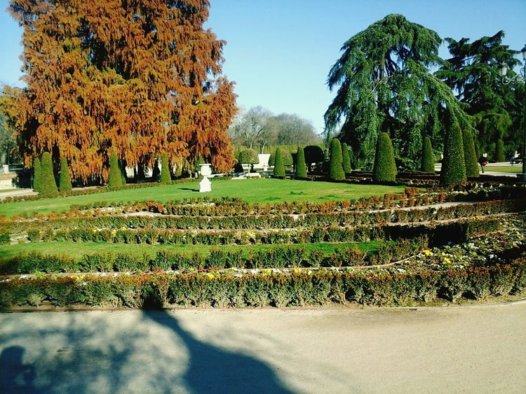 Parque Del Retiro Madrid Spain Nature Tranquility Beauty In Nature EyeEmNewHere