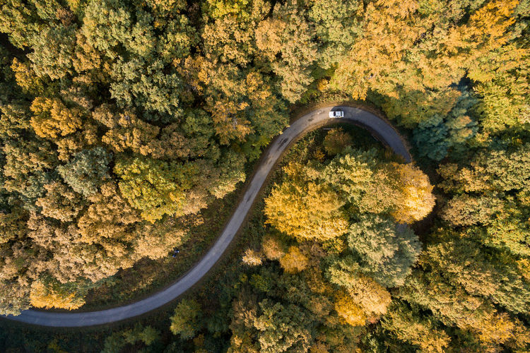 Aerial View Of Mountain Road In Forest During Autumn