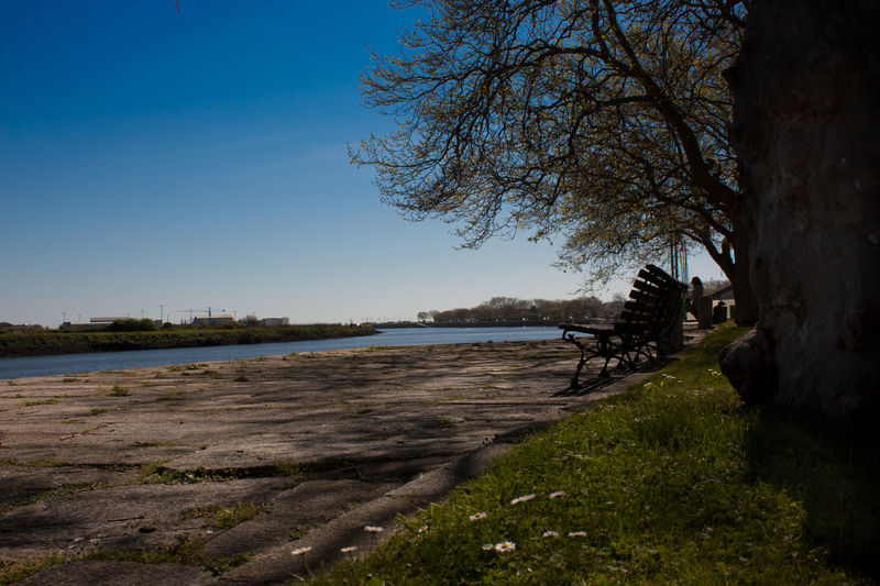 Angles And Views Beauty In Nature Bench Clear Sky Cool Day Grass Ground Level View Horizon Horizon Over Water Lake Low Angle View Nature No People Outdoors River Scenics Sky Sky And Clouds Tranquil Scene Tranquility Tree Tree Vila Do Conde Water The Great Outdoors - 2017 EyeEm Awards