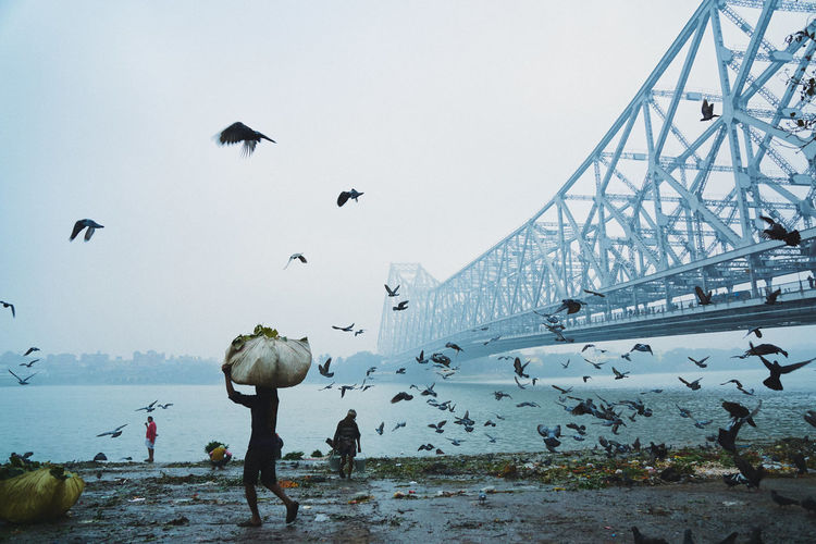 People And Birds By Howrah Bridge Over Hooghly River In Foggy Weather