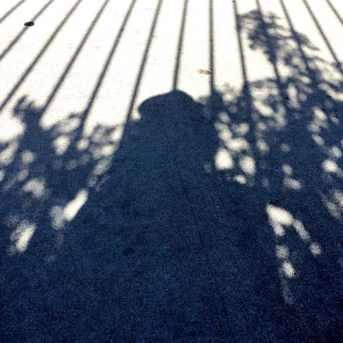 Pivotal Ideas shadow