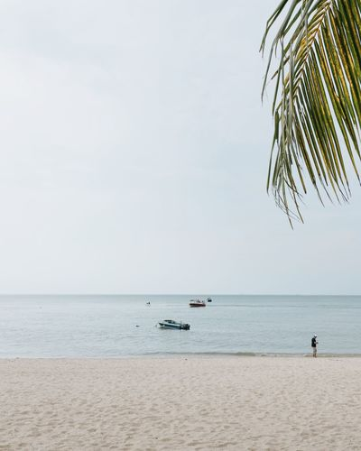 Beach life Water Sea Sky Horizon Over Water Horizon Scenics - Nature Beauty In Nature Beach Tranquility Copy Space Incidental People Tranquil Scene Transportation Land Clear Sky Non-urban Scene Nature Day Nautical Vessel Outdoors