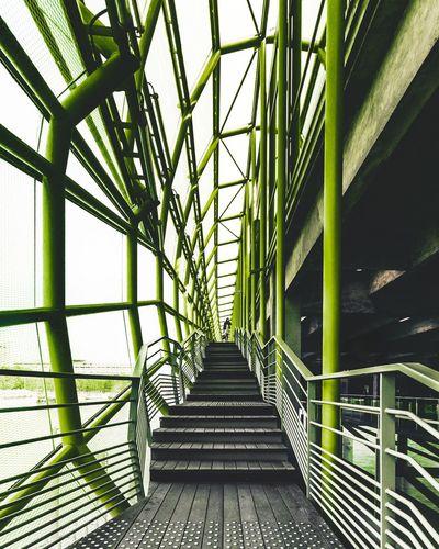 Paris jungle Explore Exploring City Green Color Green Color Architectural Feature Architecture_collection Architecture Paris Built Structure Day The Way Forward Architecture Indoors  Green Color No People Sky