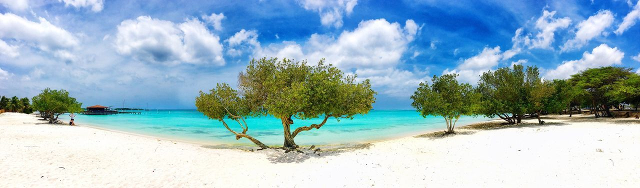 People And Places Amazing Nature Aruba One Happy Island Aruba One Happy Islan Caribbean Paradise Sea Beach Tree Water Tranquil Scene Horizon Over Water Tranquility Sand Sky Scenics Shore Panoramic Blue Beauty In Nature Nature Coastline Cloud - Sky Cloud Tropical Climate Day
