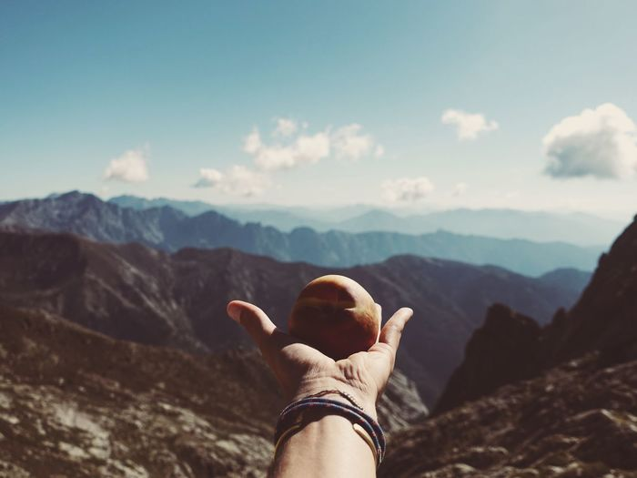 Cropped hand holding fruit against mountain