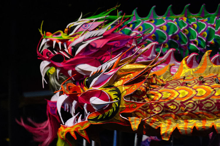 Dragon Chinese Dragon Close-up Flower Flower Head Fragility Multi Colored Night No People Outdoors Ribbon