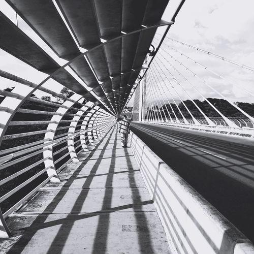 Hypnotic Bridge