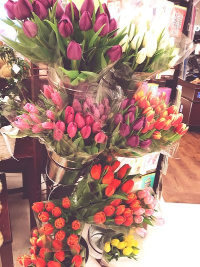 #Tulips Beautiful Vibrant Colorful Smells Good Peaceful Calming Iwantthemall Flowers Love MyFave I Love Flowers Nature
