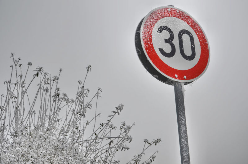 Low angle view of speed limit sign and dried plants against clear sky