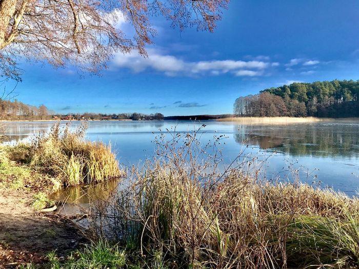 """Omulew See"" in Masuren/Polen Traumhaftschön Beauty In Nature Masuren Poland Water Sky Scenics - Nature Reflection Beauty In Nature Plant Lake Cloud - Sky Day Outdoors Land Beach Idyllic No People Nature"