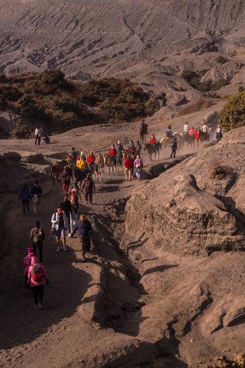 Group of people walking in desert