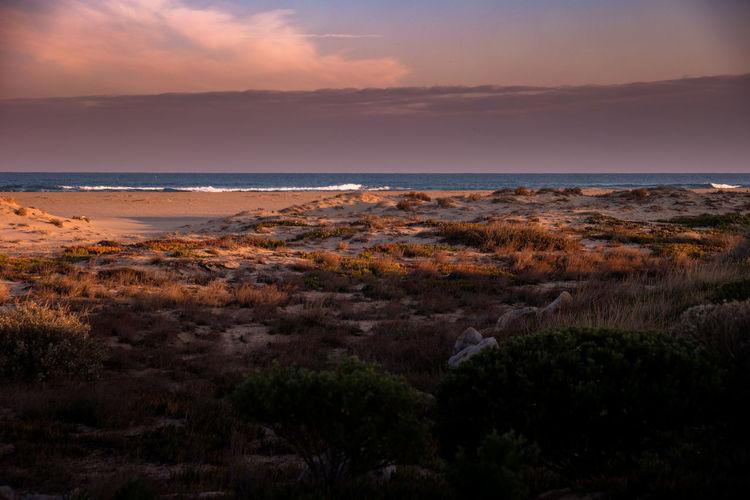 Beach Beauty In Nature Fitougraphie Horizon Over Water Landscape Laurent Vankilsdonk Mood Nature No People Outdoors Scenics Sea Sky Sunset