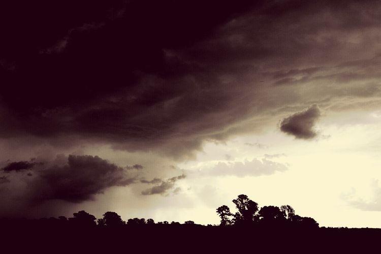Storm Clouds Field Monochrome