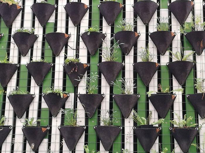 Full frame shot of potted plants on fence