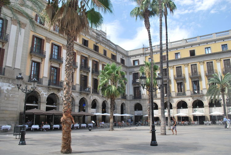 Adult Adults Only Architecture Barcelona Barcelona, Spain Building Exterior Catalonia Catalunya City Day Lifestyles Men Outdoors Palm Tree People Sky SPAIN Square Street Travel Destinations Tree
