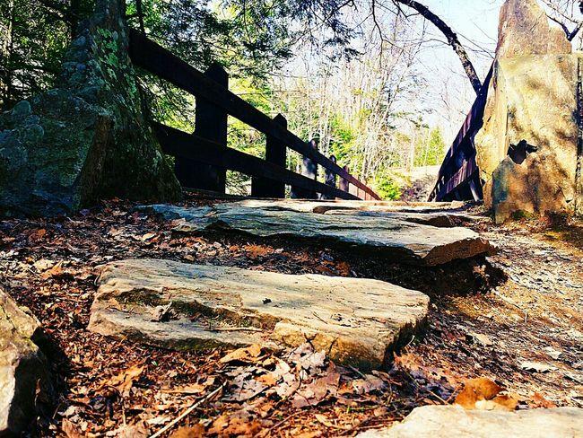 Reedited Bridgeporn Nature On Your Doorstep Stairways