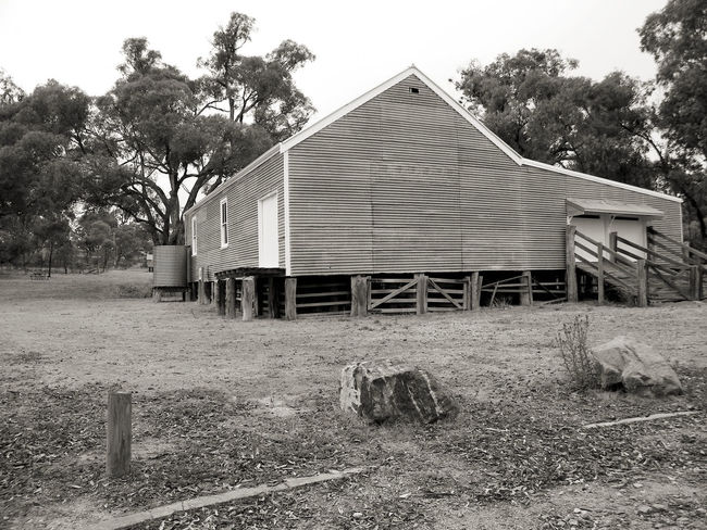 Mountain Beauty In Nature Architecture Black And White Photography Day Building Exterior Built Structure Heritage Building History Through The Lens  No People Shearing Shed Outdoors Nature Tree Heritage Buildings History
