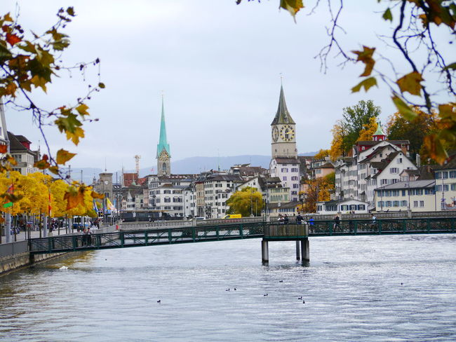 Autumn Autumn Colors City Cityscapes Day Leaf No People Outdoors Season  Time Time To Reflect Zurich, Switzerland Zürich