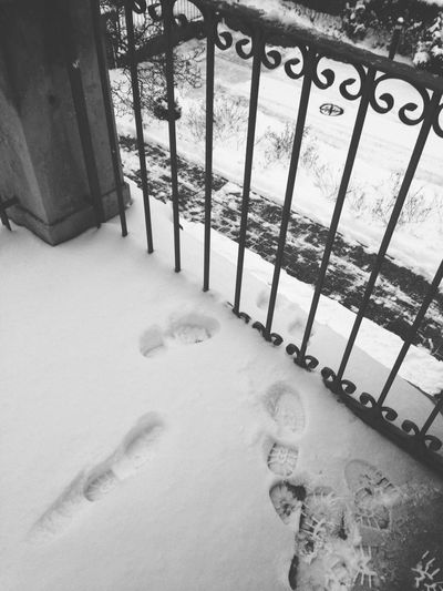 Blackandwhite Monochrome Snow Winter