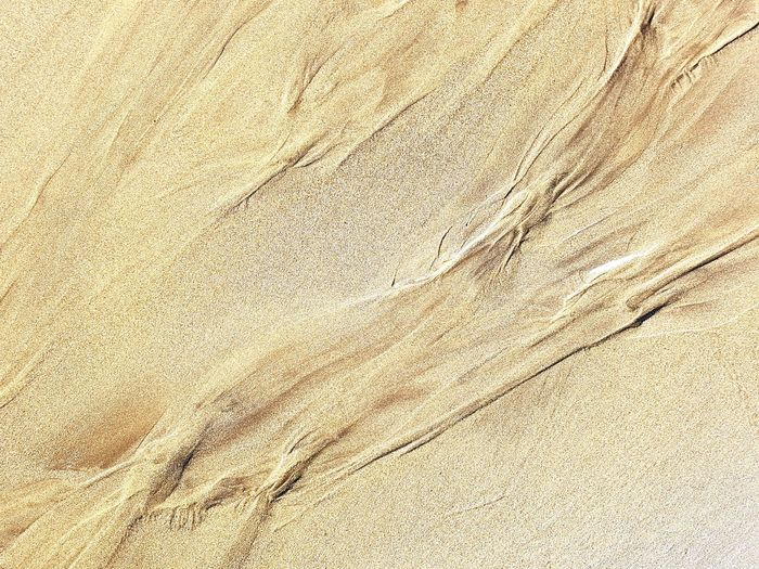 Abstract Patterns In Nature Sandy Beach Sand Lines MoonScape Veins Of The Sea