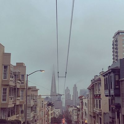 Looking Down Clay Street Colour Your Horizn HillTopView San Francisco, California Skyline TransAmericaBuilding Urban Geometry Views Winter Sky Architecture No People Street Photography Urban Landscape