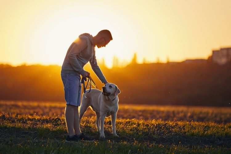 Man with dog on field against sky during sunset