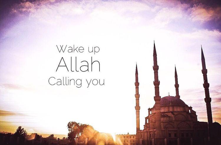 The World Of Islam ISLAM♥