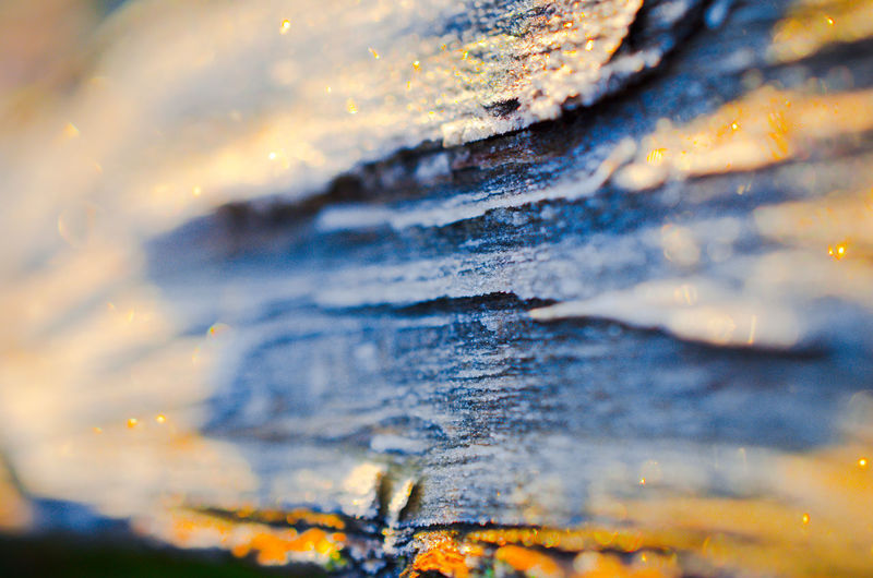Abstract wooden tree trunk background Abstract Wooden Tree Trunk Tree Trunk Backgrounds Nature Blurry Selective Focus Close-up Textured  No People Full Frame Pattern Day Extreme Close-up Rock Rough Macro Outdoors Weathered Detail Rock - Object Solid