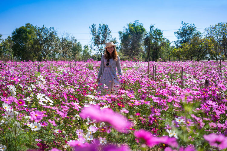 Woman standing by pink flowers on field