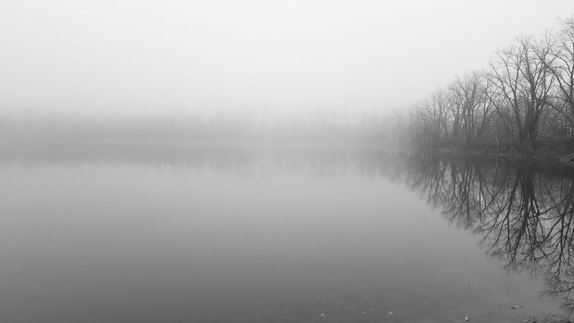 Vanishing Point Foggy Foggy Lake Samsungphotography EyeEm New Jersey Reflection EyeEm Nature Lover B&w Nature Black And White Collection  Empty Space Water Reflection Dull But Beautiful Negative Space B&w Photography United States Water Tranquility Fog Lake Scenics Tranquil Scene Waterfront Beauty In Nature Non-urban Scene Nature Copy Space Calm Standing Water Tree Weather