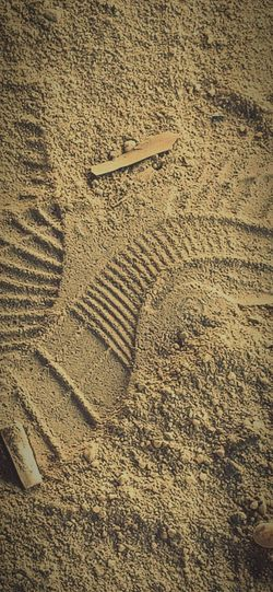 sand time Track - Imprint Textured  Full Frame Pattern Sandy Beach FootPrint Animal Track Shore Plowed Field Wave Pattern Paw Print First Eyeem Photo EyeEmNewHere