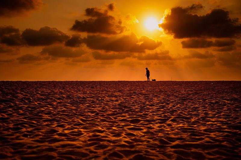 Sea Sunset Full