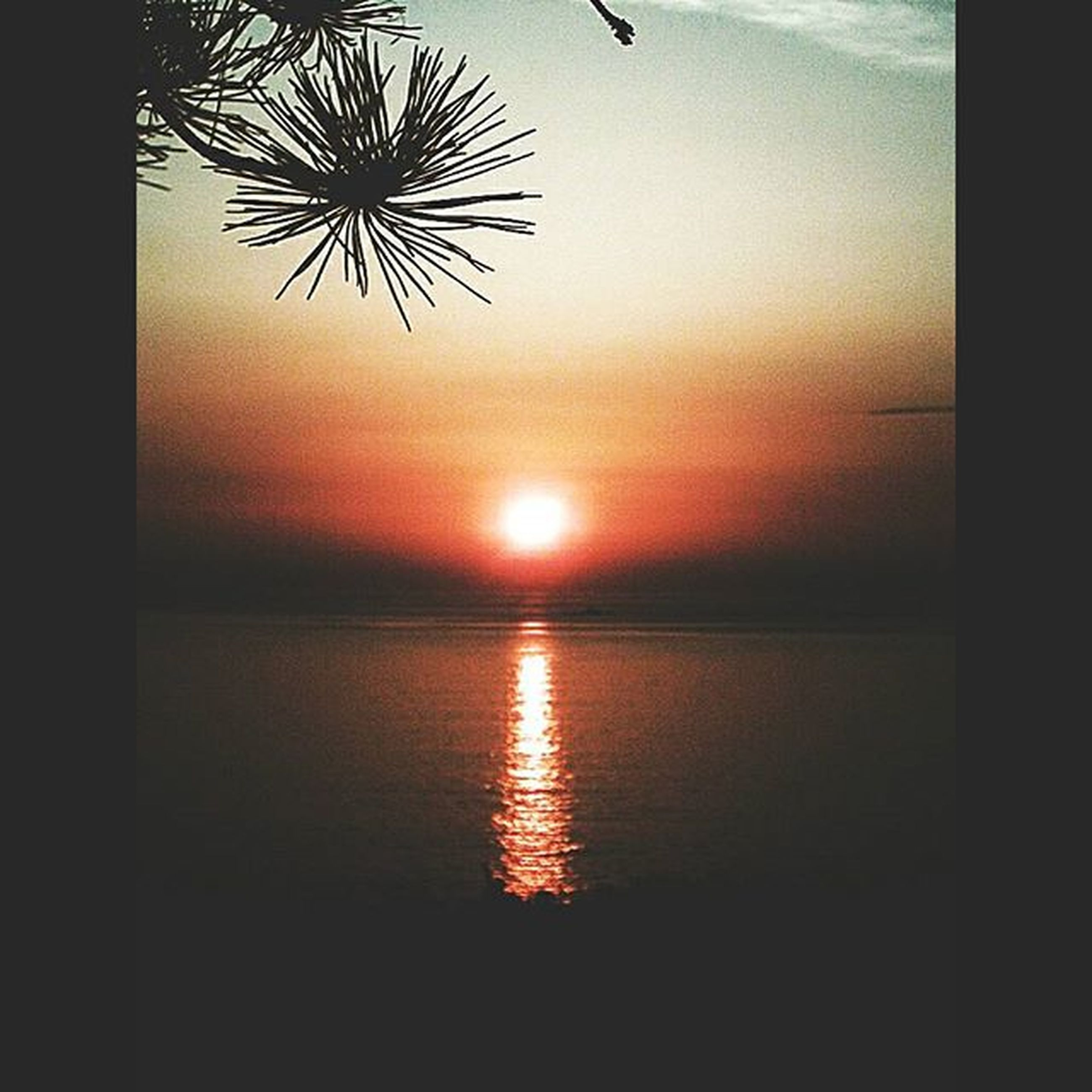 sunset, water, horizon over water, sea, scenics, orange color, sky, sun, reflection, tranquil scene, beauty in nature, tranquility, idyllic, nature, silhouette, waterfront, auto post production filter, cloud - sky, transfer print, no people