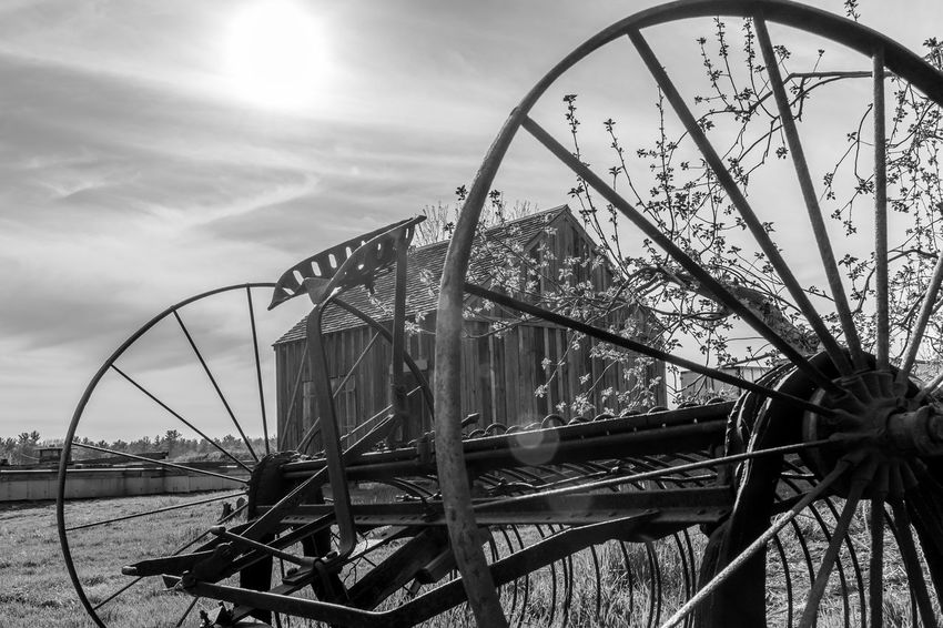 Grass Sky History Historic The Good Old Days Antique Farm Machinery Antique Barn Sunlight Day No People Outdoors Farm Life EyeEmNewHere Barntastic  Rurallife  Ruralphotography Farm Rural Scene Scenics Black And White Photography Black&white Black And White Collection
