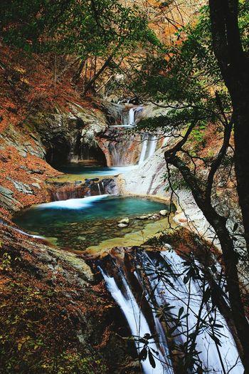 名瀑百選 七ツ釜五段の滝 Waterfalls Beautiful Beautiful Nature Nature EyeEm Nature Lover Landscape Autumn Japan Valley