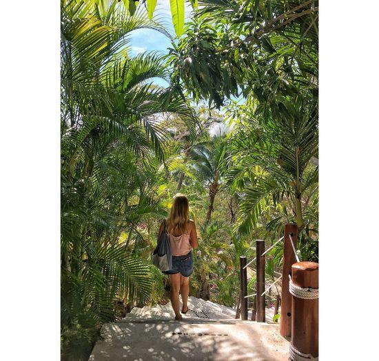 Palm Tree Child