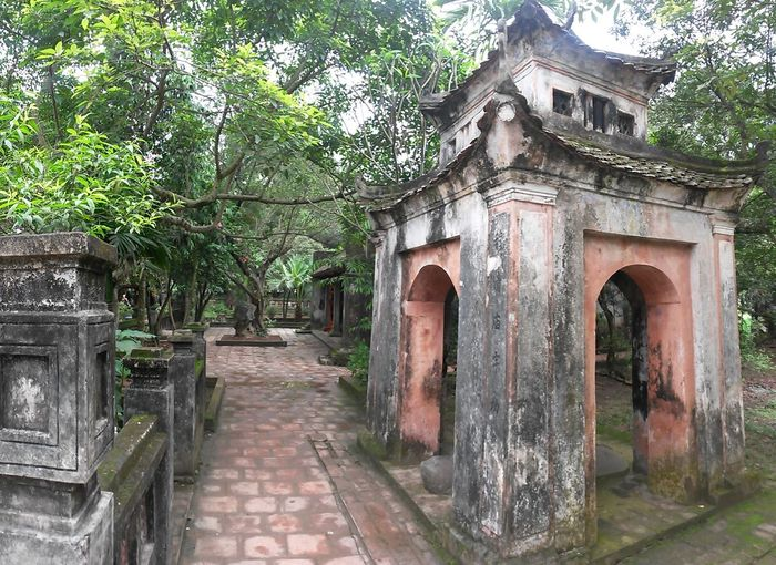 Architecture Ninh Bình South East Asia Vietnam Ancient Arch Architecture Belief Building Building Exterior Built Structure Day Entrance Green Color Growth History Nature No People Old Outdoors Plant Religion Temple The Past Tree