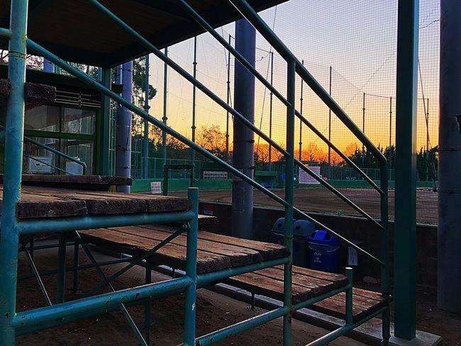 トレーニング 早朝 夜明け 野球 青春 Kids Memory Sunrise Stadium Baseball Built Structure Architecture Building Exterior No People City Outdoors