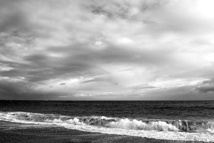 Seagulls Seagulls Beach Beauty In Nature Blackandwhite Cloud - Sky Horizon Horizon Over Water Power In Nature Scenics - Nature Sea Sky Water Wave