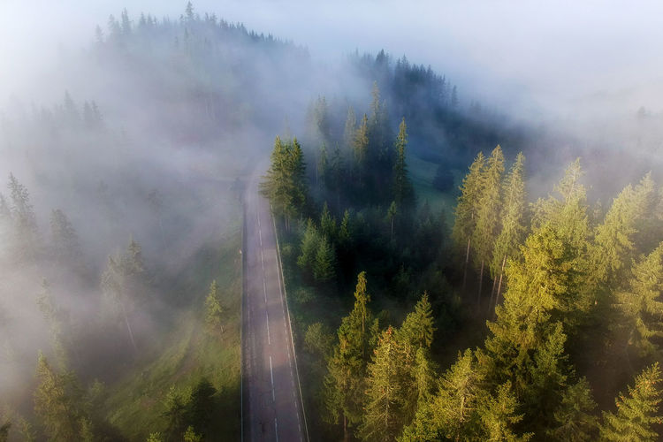 Aerial View Of Road In Forest During Foggy Weather