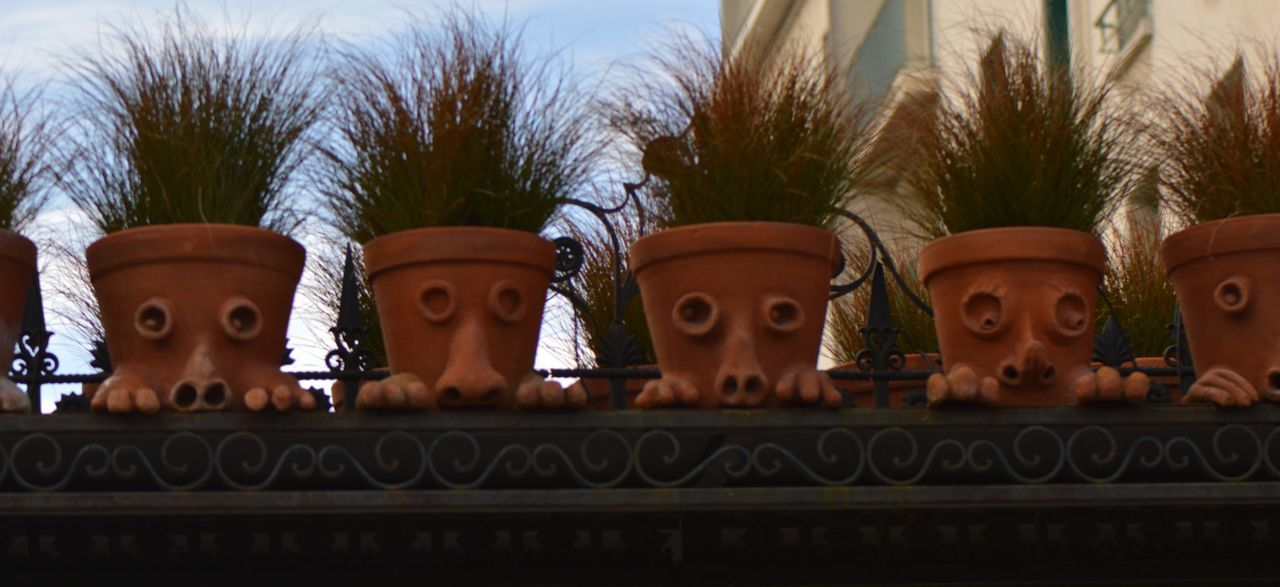 in a row, no people, tree, palm tree, outdoors, low angle view, day, growth, sculpture, close-up, sky