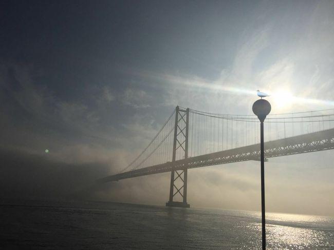 Bridge Fog Fog Over Water Foggy Day Foggy Morning Over River Foggy Morning In Lisbon Foggy Landscape Foggy Morning Lisbon City Life Lisbona Lisbonne Lisbonlovers Lisbon Rio Tejo Lisboa Ponte 25 De Abril Lisboa Sunset Silhouette Bridge Porn Bridge Silhouette