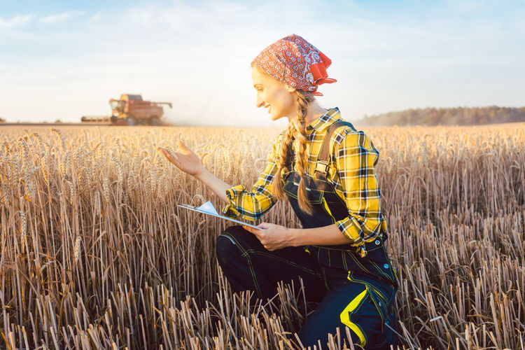 Female researcher examining cereal plants on agricultural field