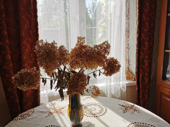 Close-up of flower vase by window at home
