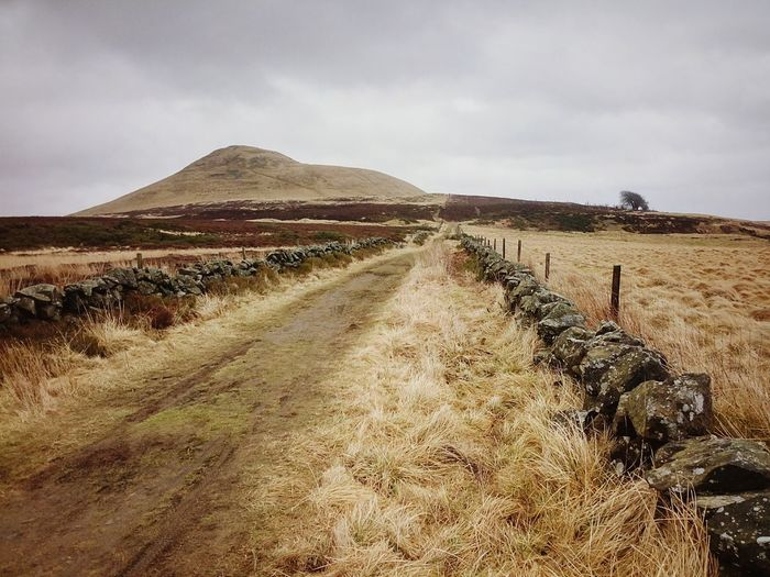 Clambering around the hills of Fife  Eastlomond Landscape Scotland